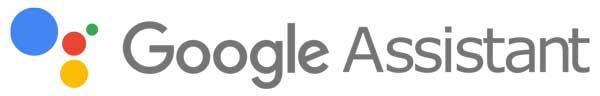 Google Assistant Action